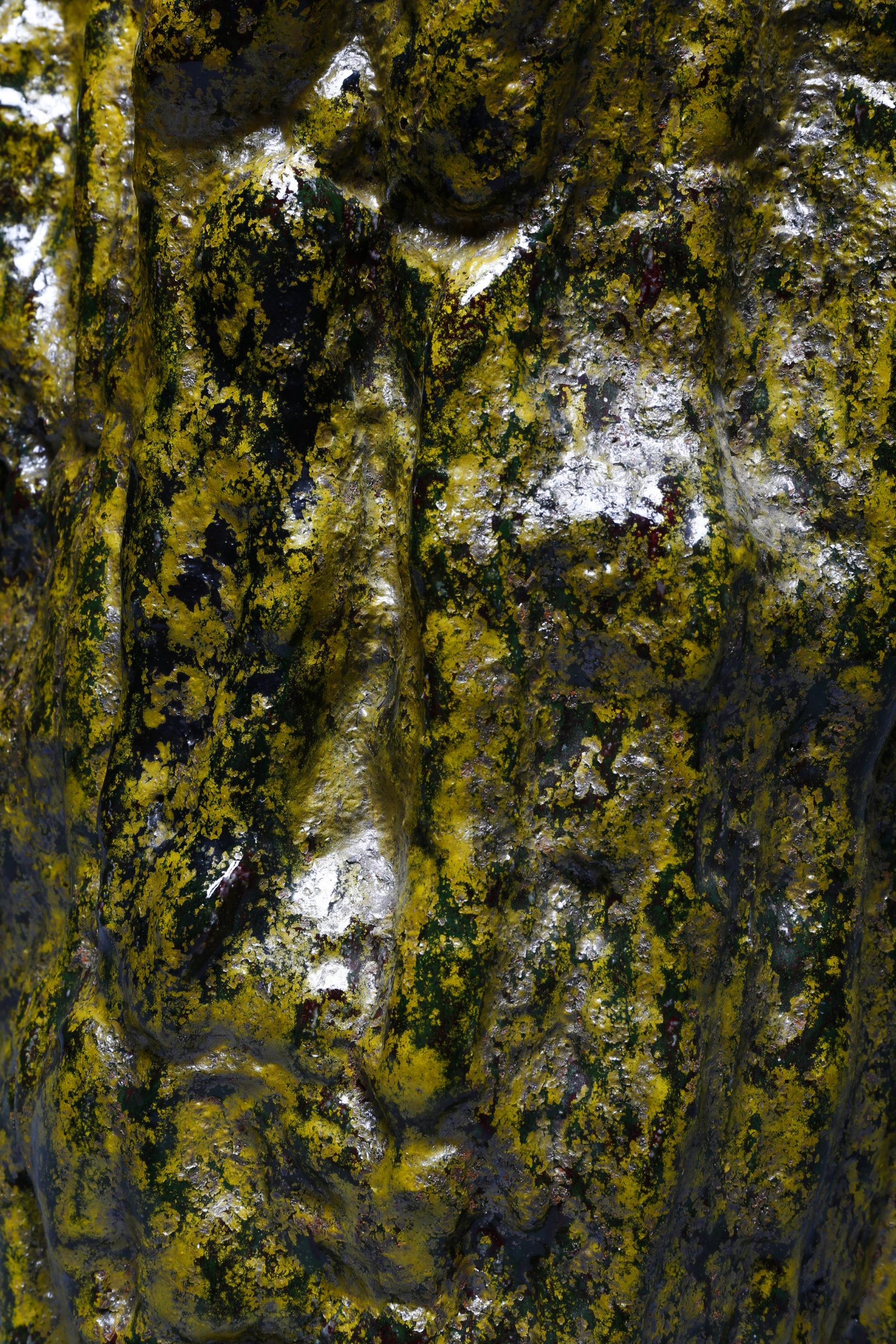 Sculpture émaillée lichen Alain Gaudebert - Galerie Avenir - © Philippe Cibille